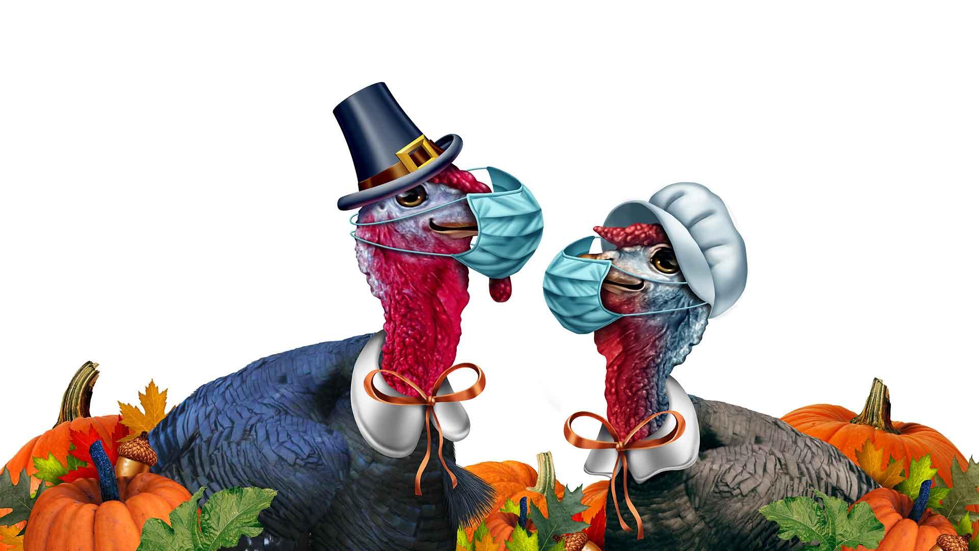 Feel the Gratitude : Thanksgiving Quiz