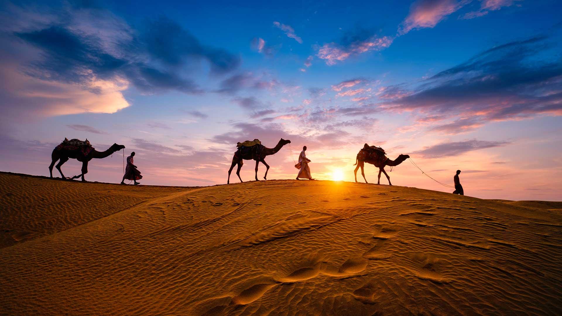 Desert Safari : Launch of Karma Golden Camp